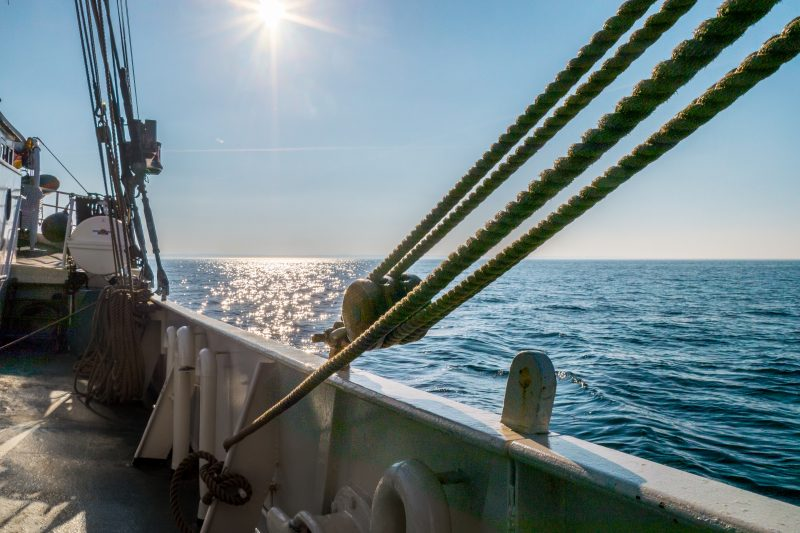 Auf Fahrt-Kurs 2017: Segeln – Lang war die Reise …